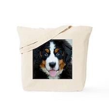 DSC_0586 - Version 2 Tote Bag