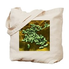 Bacteria, artwork Tote Bag