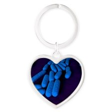 Bacillus subtilis bacteria, artwork Heart Keychain