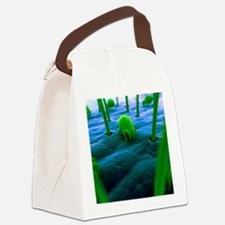 Dust mites, artwork Canvas Lunch Bag