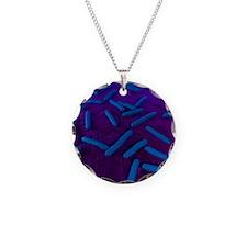 E coli bacteria, artwork Necklace Circle Charm