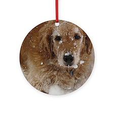 Golden Retriever in the snow Round Ornament