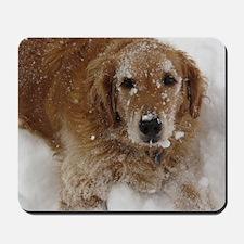 Golden Retriever in the snow Mousepad