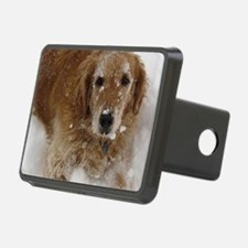 Golden Retriever in the sn Hitch Cover