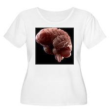 Human brain,  T-Shirt