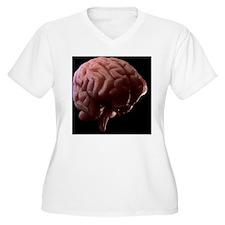 f0042869 T-Shirt