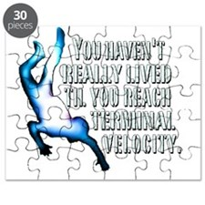 Terminal Velocity Puzzle