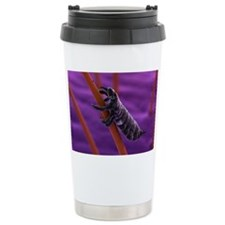 Head louse, artwork Travel Mug