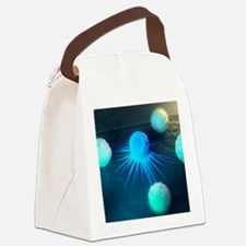 Immune response to cancer, artwor Canvas Lunch Bag