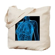 Female anatomy, artwork Tote Bag