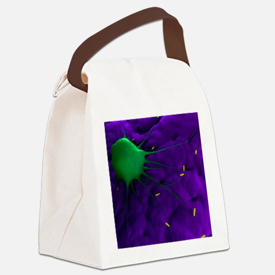 Macrophage attacking bacteria, ar Canvas Lunch Bag