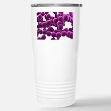 Streptococcus bacteria, Stainless Steel Travel Mug