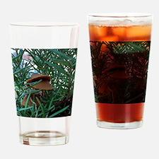 Mushroom Forest Drinking Glass