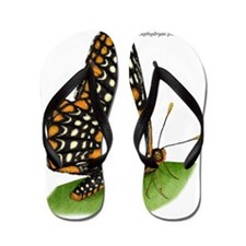 Baltimore Checkerspot Butterfly Flip Flops