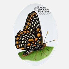 Baltimore Checkerspot Butterfly Oval Ornament