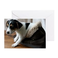 Puppy in Ugg Boot Greeting Card