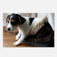 Puppy in Ugg Boot Postcards (Package of 8)