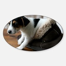 Puppy in Ugg Boot Sticker (Oval)