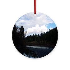 eelriveralloverprintwomensshirt Round Ornament