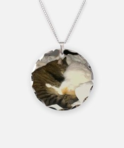 The cats Necklace