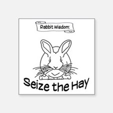 "Seize the Hay Square Sticker 3"" x 3"""