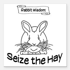"""Seize the Hay Square Car Magnet 3"""" x 3"""""""