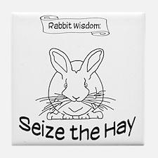 Seize the Hay Tile Coaster