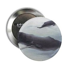 """Whale And Dolphin 2.25"""" Button"""