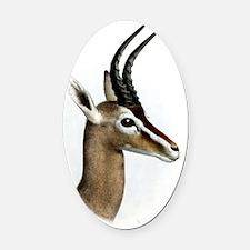 Antelope Illustration Oval Car Magnet