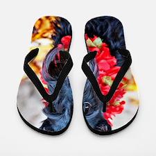 Hawaii Scottie v2 Flip Flops