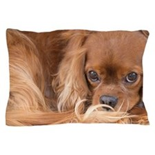 Sweet Friend Ruby Cavalier King Charle Pillow Case