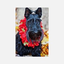Hawaiian Scottie Dog Rectangle Magnet
