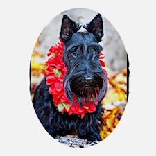 Hawaiian Scottie Dog Oval Ornament