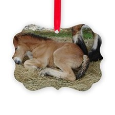 Just a Baby Ornament