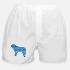Bone SWD Boxer Shorts