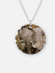 Warthog Necklace