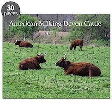 Milking Devon Cattle Puzzle