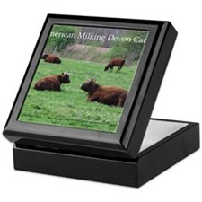 Milking Devon Cattle Keepsake Box