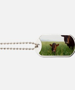 Milking Devon Cattle Dog Tags