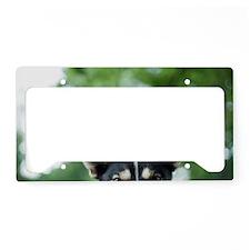 Yukon License Plate Holder