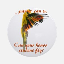 Sun Conure my parrot can fly Steve  Round Ornament