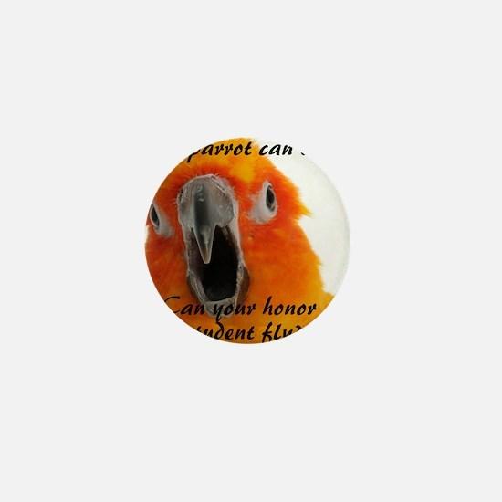 Sun Conure 2 Steve Duncan Mini Button