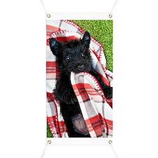 Scottish Terrier Puppy Play Banner
