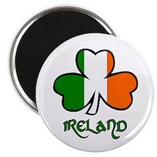 irish-flag-shamrock Magnets