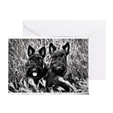 Sisters - Scottish Terriers in BW v2 Greeting Card
