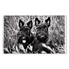 Sisters - Scottish Terriers in Decal