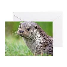 European otter Greeting Card