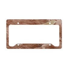 Eyelash mite SEM License Plate Holder