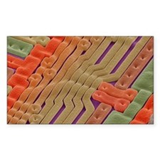 EPROM silicon chip, SEM Decal