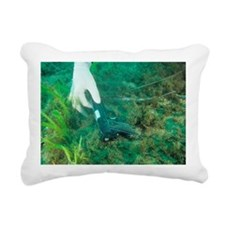 Finding evidence underwa Rectangular Canvas Pillow
